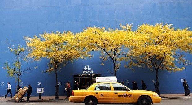 Autunno a New York: shopping e passeggiate