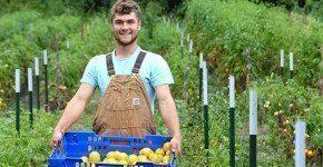 Girare il mondo lavorando in fattoria, ti dico come