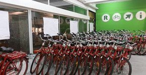 Tour in bici per le architetture di Rotterdam