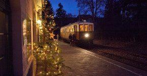 Mercatino di Natale di Bolzano sul Renon