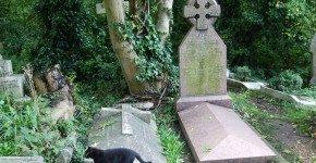 Un pomeriggio da brivido al cimitero di Highgate