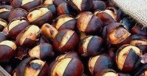 Festa delle castagne e del vino rosso a Frascati