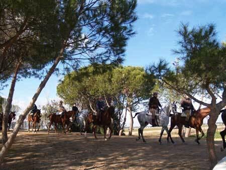 A cavallo nella campagna andalusa, viaggio in Spagna