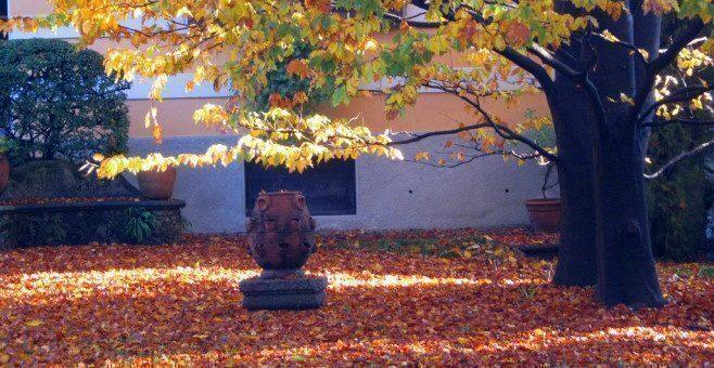 InstaDegusta – I colori dell'autunno in un click in Umbria