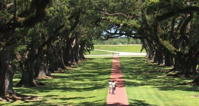 Cosa visitare in Louisiana: Baton Rouge