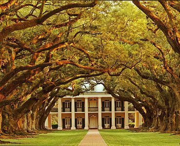 Oak Alley Plantation in Louisiana, la meravigliosa piantagione