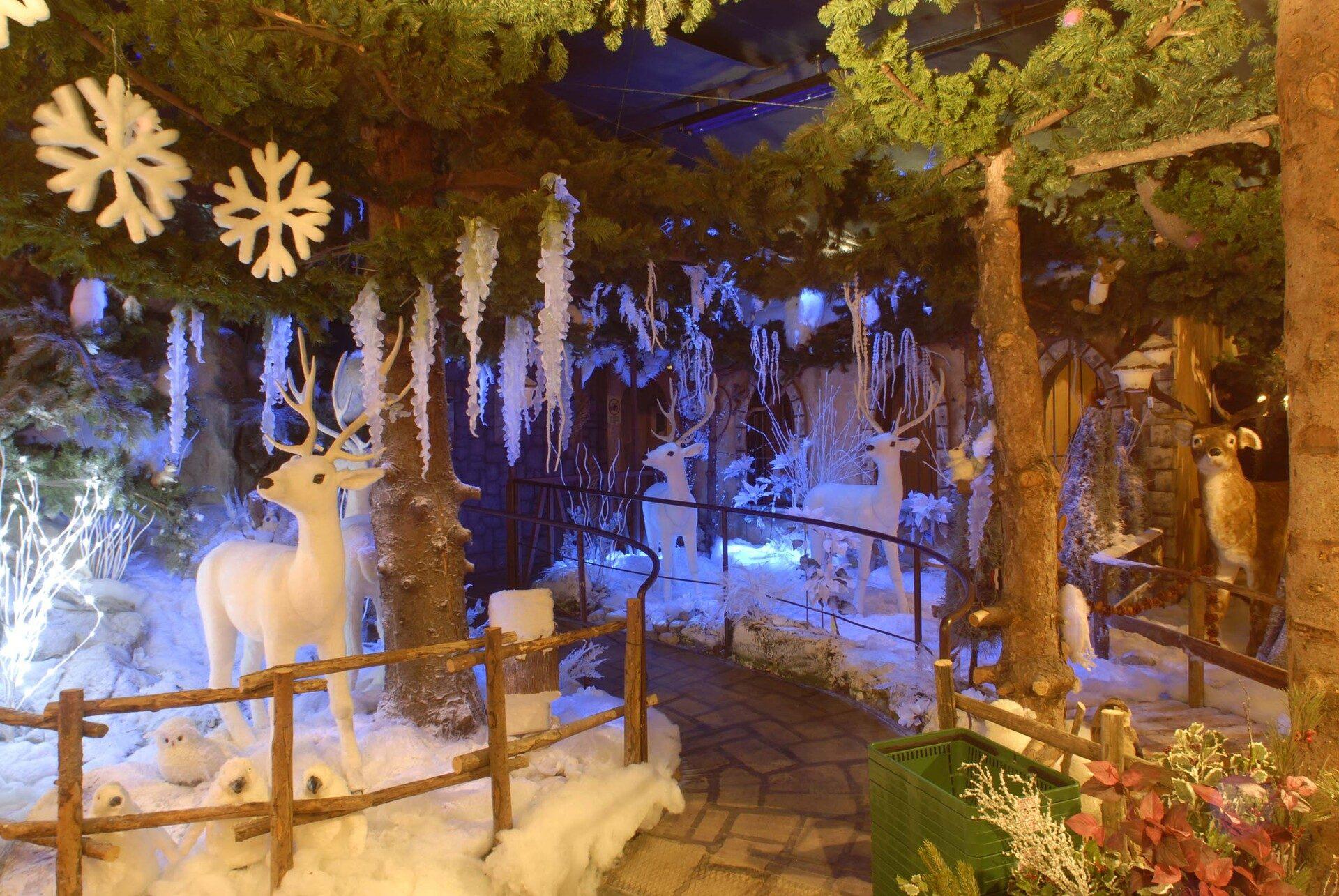 La Casa Di Babbo Natale A Verona.Il Villaggio Di Natale A Flover Mercatini Di Natale A Bussolengo Verona