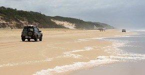 Fraser Island: il paradiso di sabbia ma attenzione ai Dingo