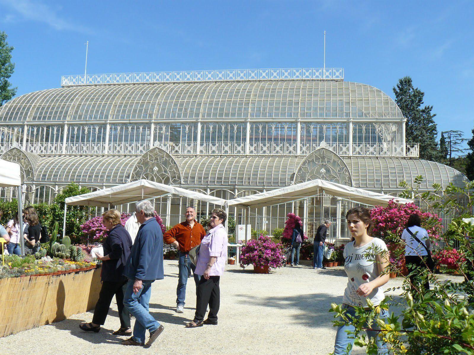 Orticoltura fiori e primavera a firenze viaggi low cost - Giardino dell orticoltura firenze ...