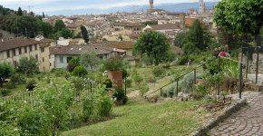 Firenze, il giardino delle rose a Piazzale Michelangelo
