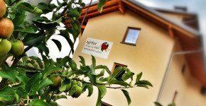 Estate in Val di Sole con l'Opportunity Card