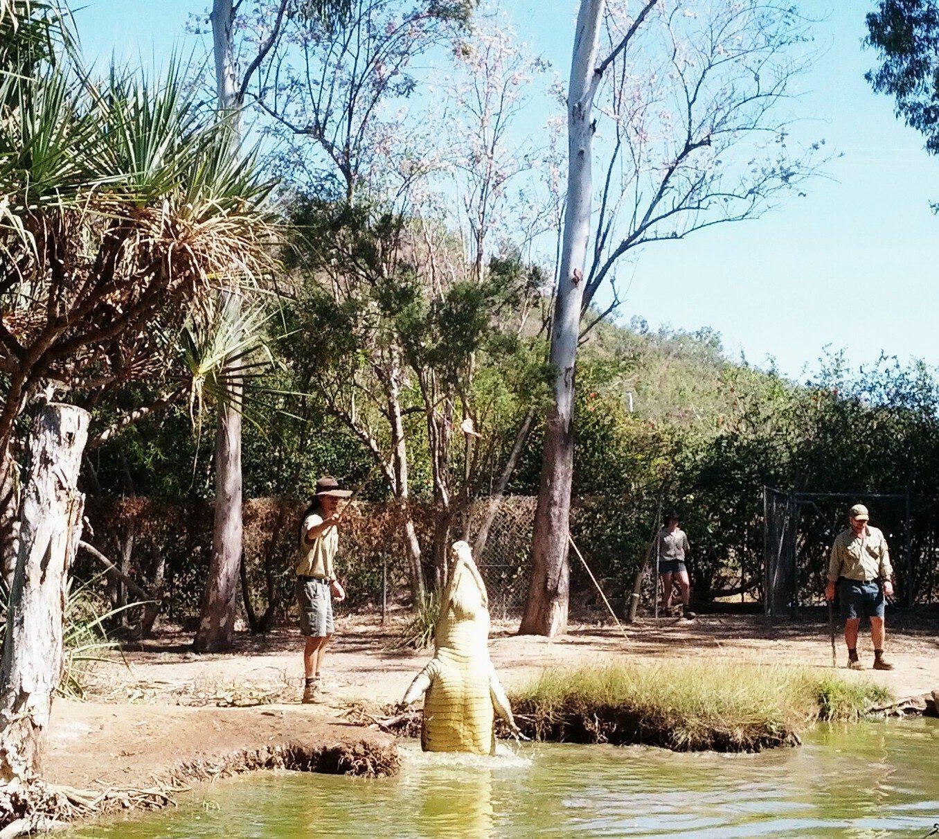 Billabong Sanctuary