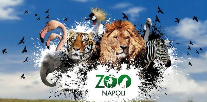 zoo-di-napoli-carnevale