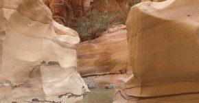 Giordania, la Riserva Naturale di Dana