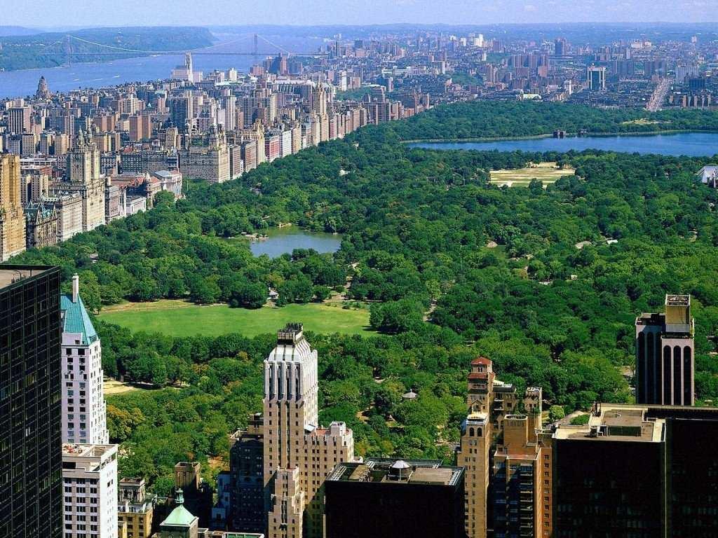 new-york-dormire-central-park