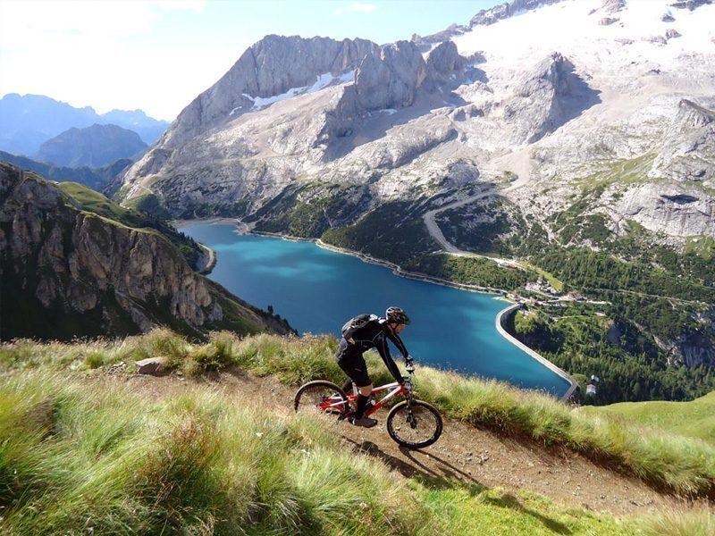 Chamois-bicicletta