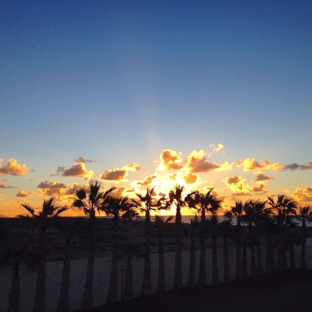 Sands Beach Resort alba