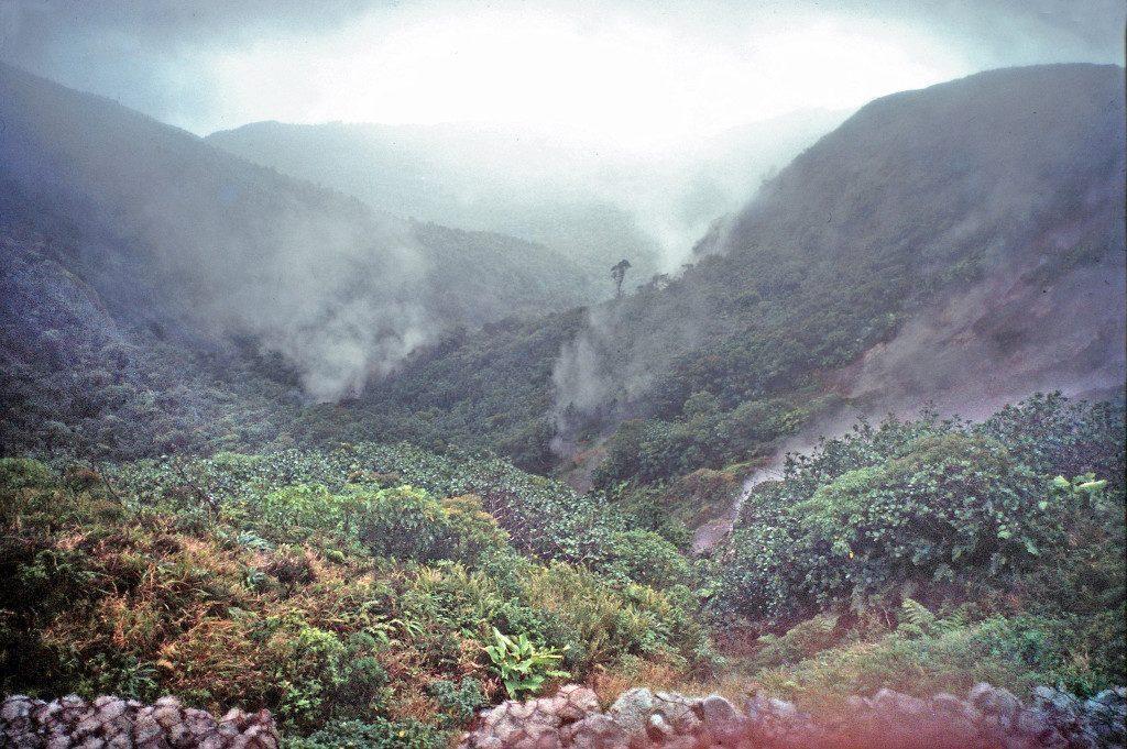 guadalupe-montagna