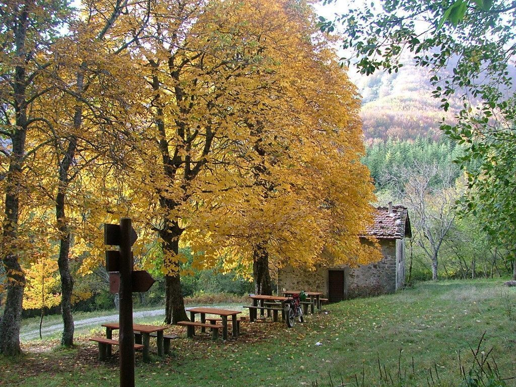 foreste-casentinesi-emilia