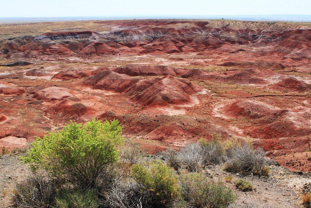 arizona-deserto-dipinto