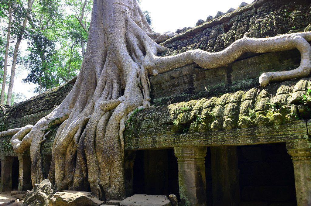 cambogia-templi