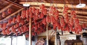 Tenuta Tannoja, mangiare in Masseria in Puglia