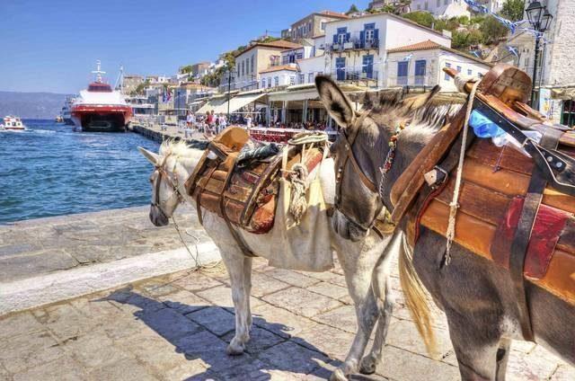 hydra-grecia