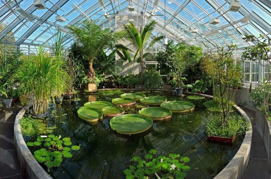 oxford-orto-botanico
