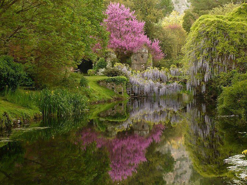 da roma a latina: giardini di ninfa