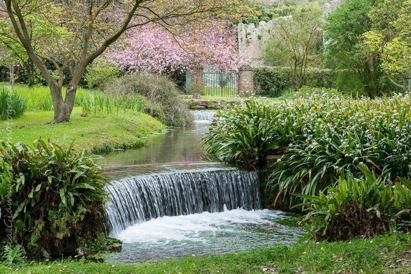 Da roma a latina giardini di ninfa for Architetto giardini roma