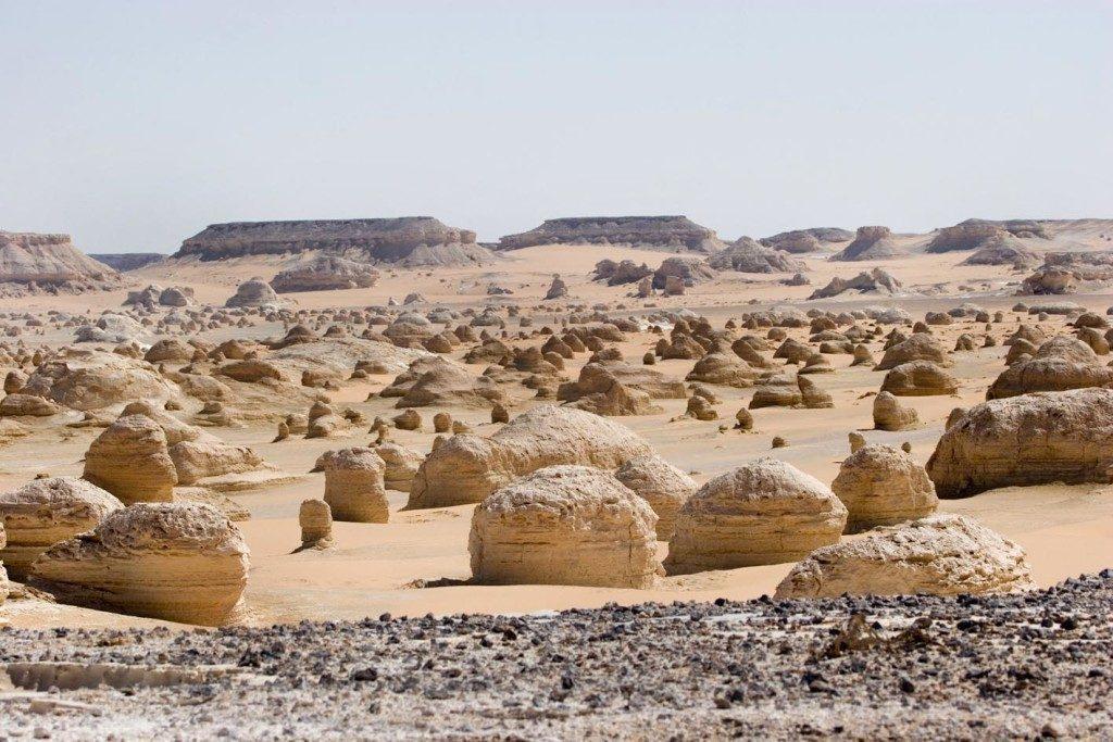 egitto-Farafra-deserto-bianco