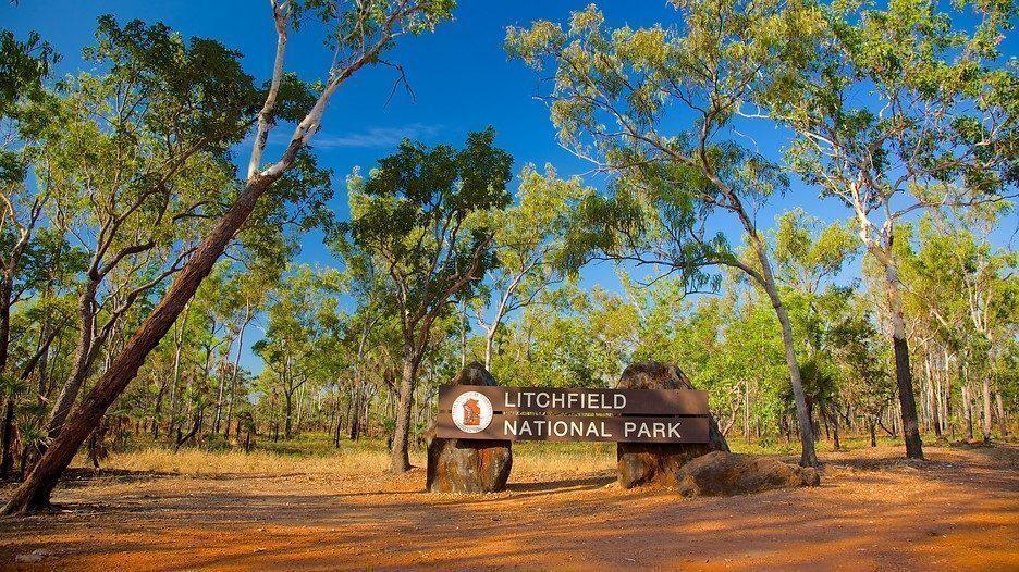 australia-Litchfield-parco