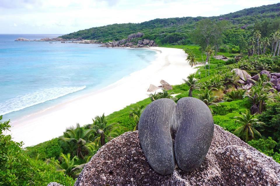 seychelles-panorama