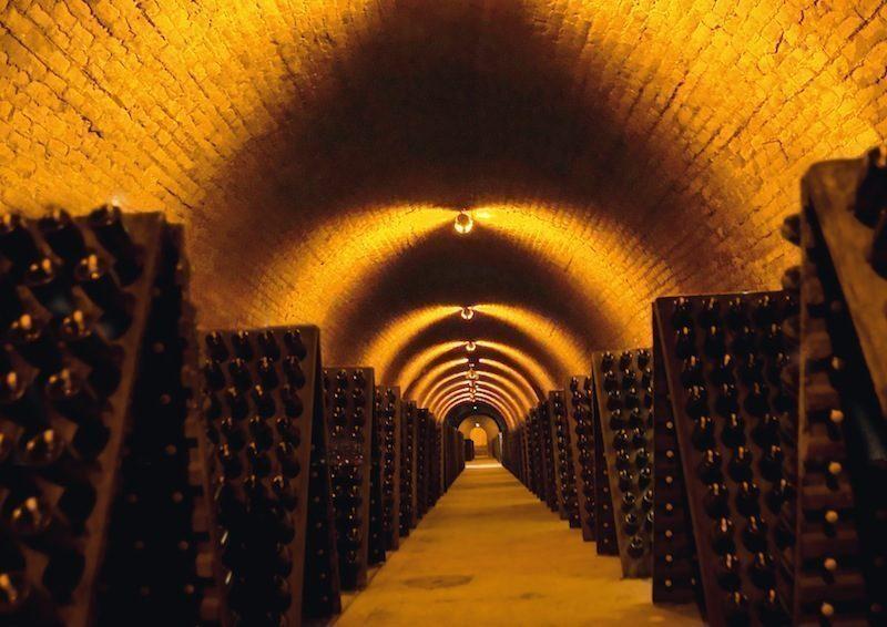 Elenco cantine vinicole a Verona e provincia, le degustazioni