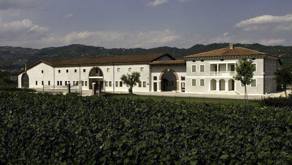 Cantine vinicole e degustazioni a Verona