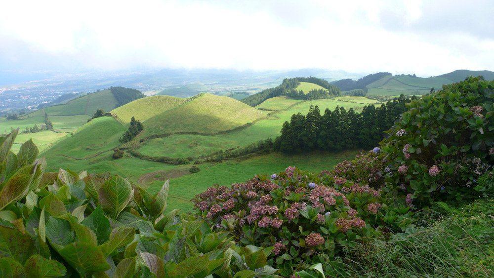 azzorre-verde-isola