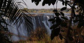 SafariZimbabwe, come viaggiare in Africa accompagnati