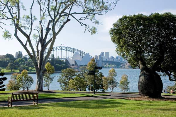 sydney-royal-botanic-gardens