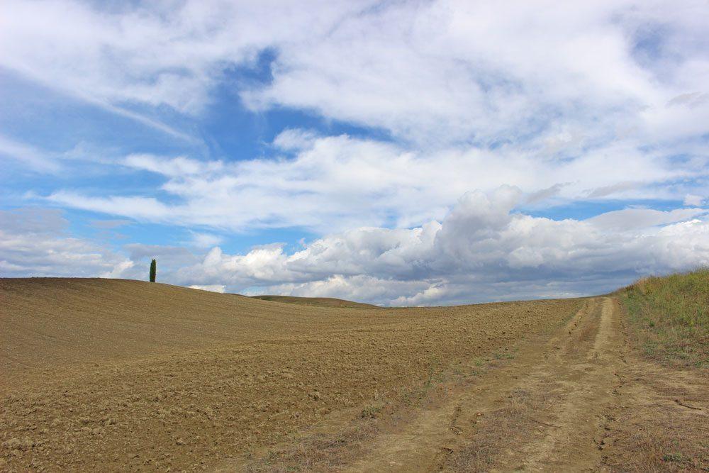 itinerari via francigena val d'orcia