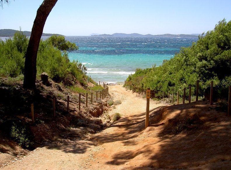 porquerolles-spiaggia-isola