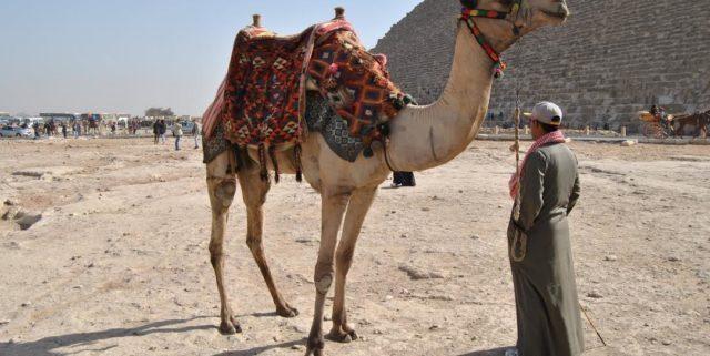 5 cose da sapere prima di andare in Egitto
