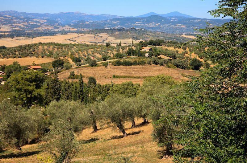 Grosseto in Toscana
