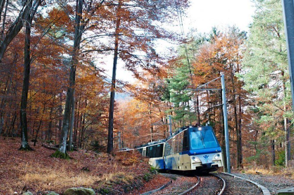 Treno foliage Piemonte