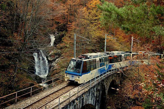 Treno in Piemonte Foliage