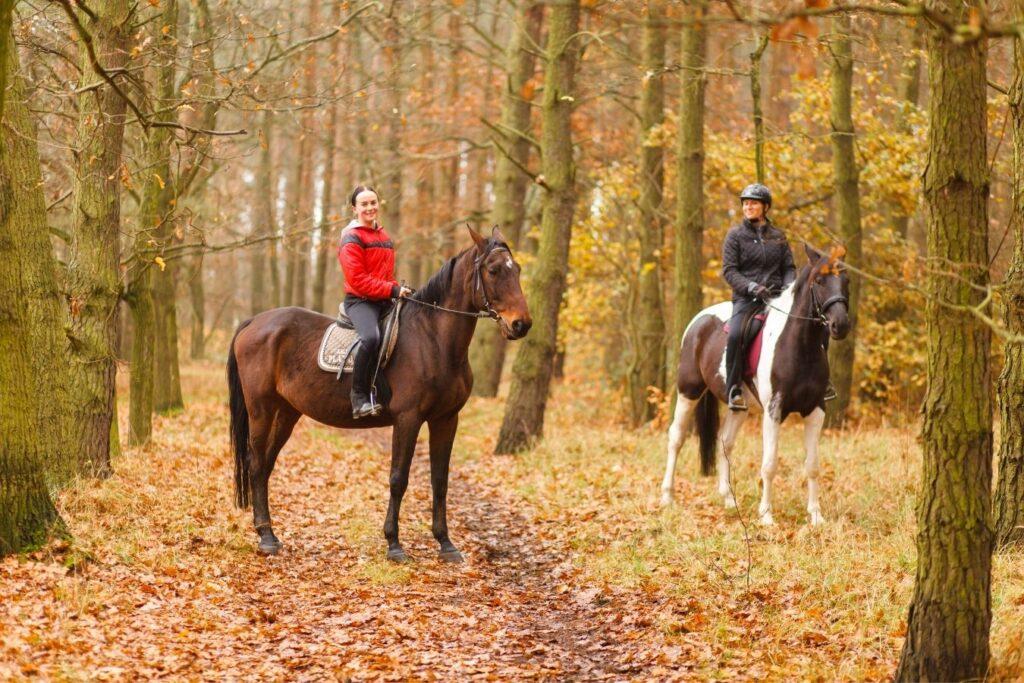 giro a cavallo a saturnia